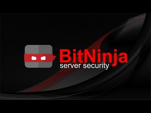 BitNinja Server Security - Jasa pembuatan website