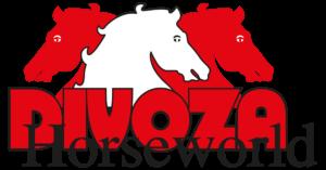 Divoza_logo