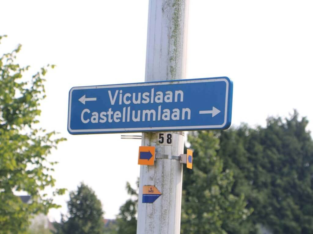 Vicuslaan-Castellumlaan_foto